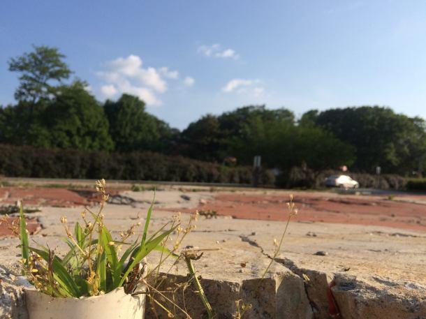 pop up park, avondale estates, art park, parklet, temporary park